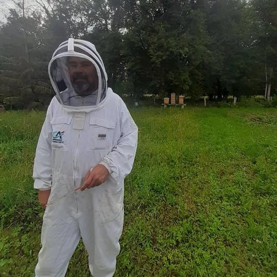 Les Idées Vertes #33 - À la rencontre des abeilles noires